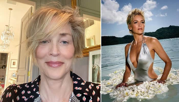 Sharon Stone Posed For Playboy As Part Of 'Strategy' To Win Basic Instinct Role